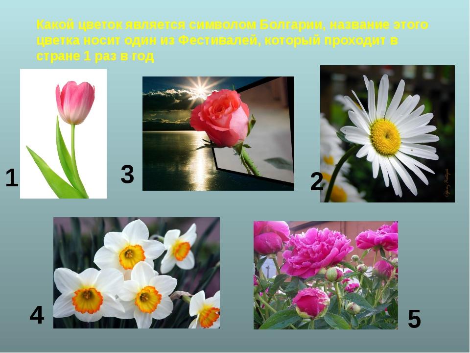 Какой цветок является символом Болгарии, название этого цветка носит один из...