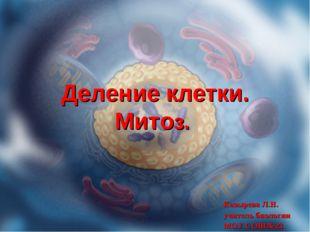 Деление клетки. Митоз. Козырева Л.Н. учитель биологии МОУ СОШ№23