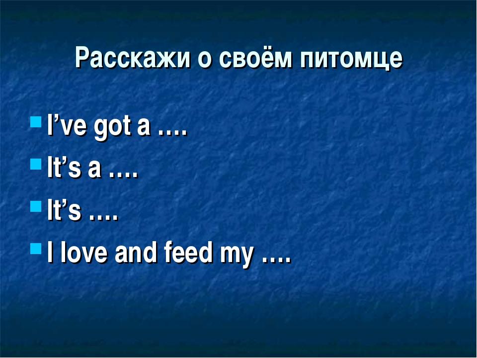 Расскажи о своём питомце I've got a …. It's a …. It's …. I love and feed my ….