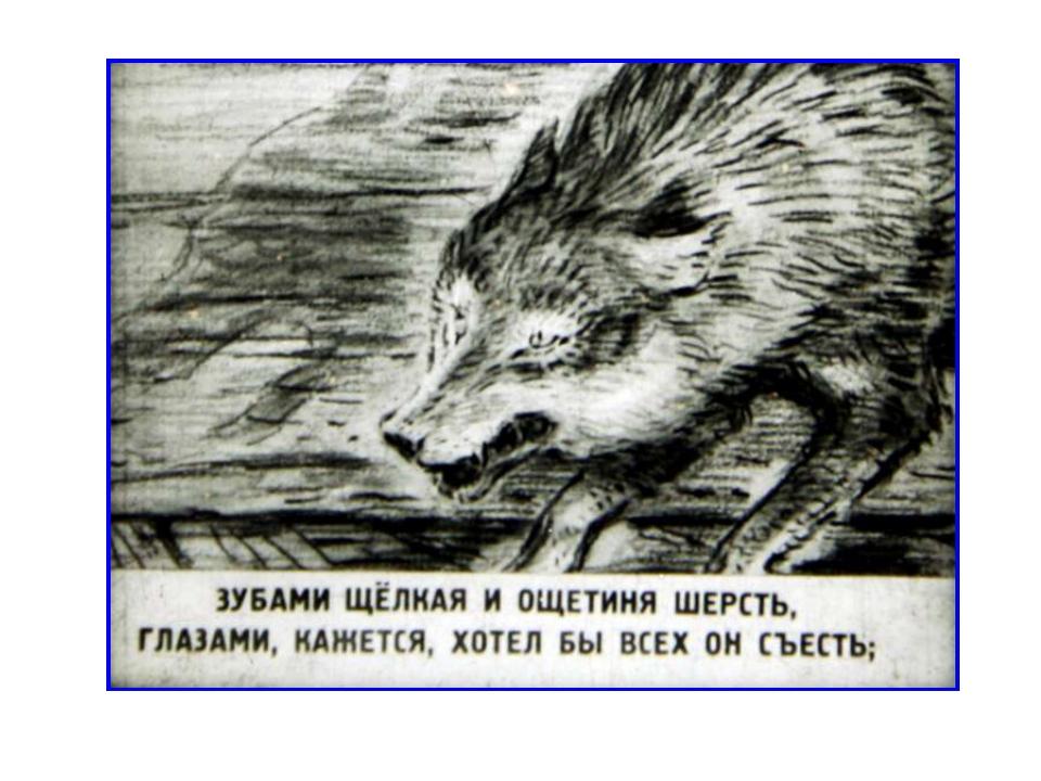 Волк на псарне в картинках