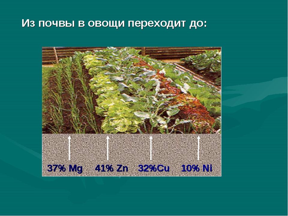 37% Mg 41% Zn 32%Cu 10% Ni Из почвы в овощи переходит до: