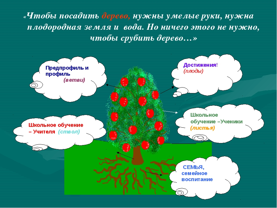 «Чтобы посадить дерево, нужны умелые руки, нужна плодородная земля и вода. Но...