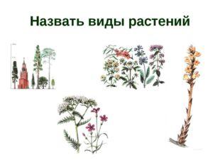 Назвать виды растений