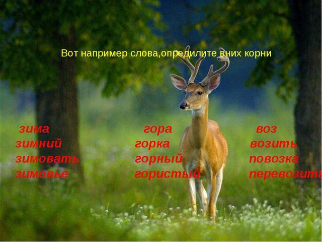 Вот например слова,опредилите вних корни зима гора воз зимний горка возить зи...