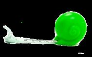 зеленая улитка.png