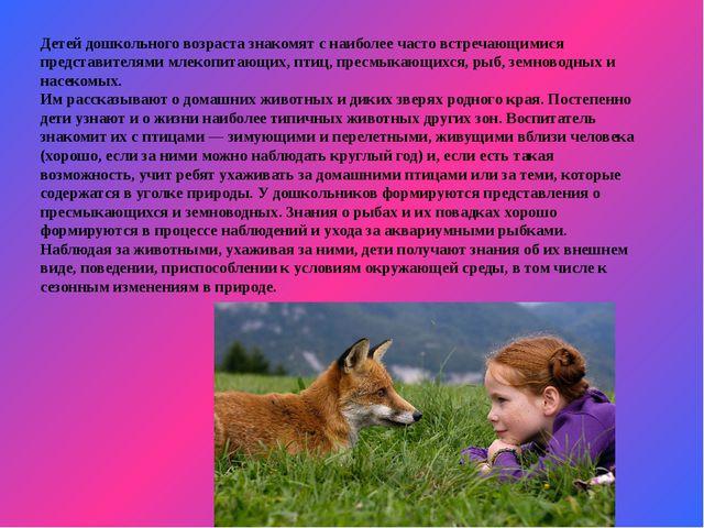 Детей дошкольного возраста знакомят с наиболее часто встречающимися представи...