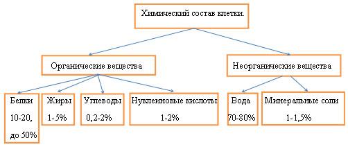 http://festival.1september.ru/articles/627189/img1.jpg