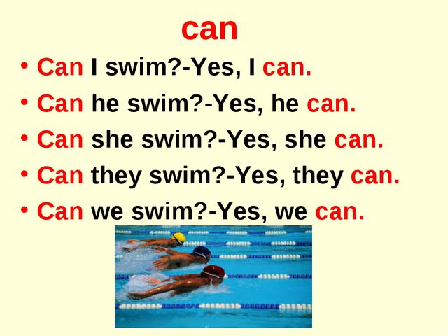 can Can I swim?-Yes, I can. Can he swim?-Yes, he can. Can she swim?-Yes, she...