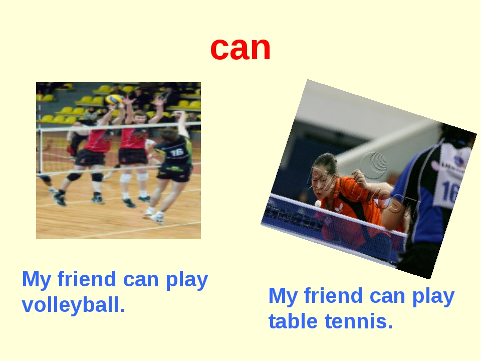 can My friend can play table tennis. My friend can play volleyball.