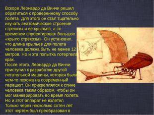 Вскоре Леонардо да Винчи решил обратиться к проверенному способу полета. Для