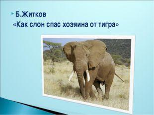 Б.Житков «Как слон спас хозяина от тигра»