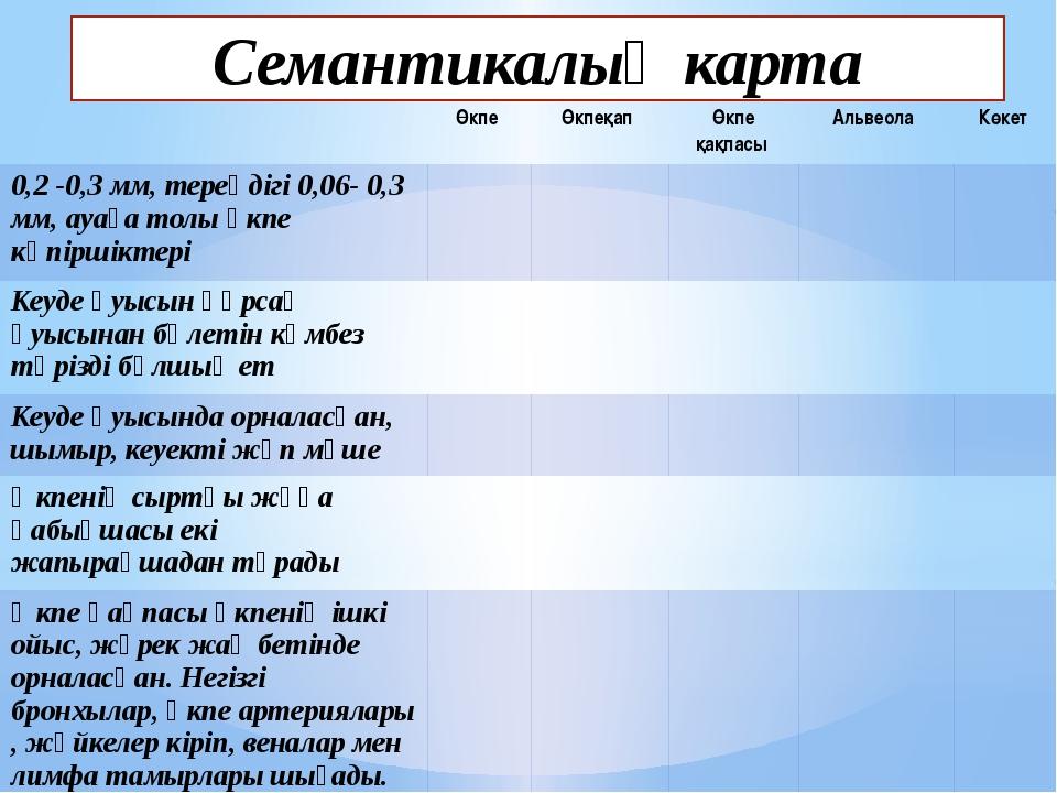 Семантикалық карта Өкпе Өкпеқап Өкпе қақпасы Альвеола Көкет 0,2-0,3 мм, терең...
