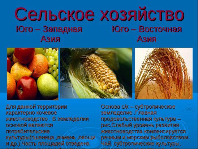 Сельское хозяйство Юго – Западная Азия Юго – Восточная Азия  Для данной тер...