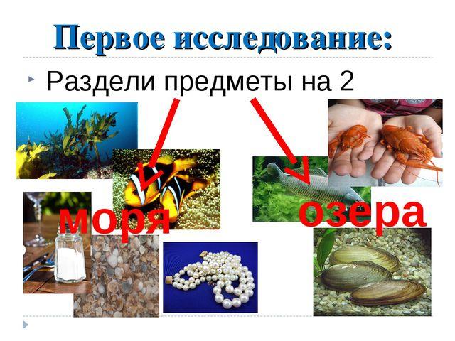 Первое исследование: Раздели предметы на 2 группы озера моря