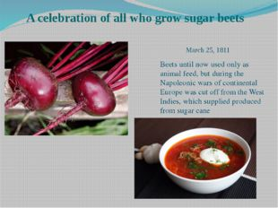 A celebration of all who grow sugar beets Beets until now used only as anima
