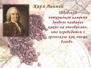 Карл Линней Шведский натуралист изменил древнее название какао на «теоброма»,