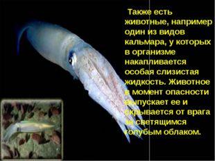 Также есть животные, например один из видов кальмара, у которых в организме н