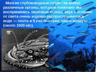 Многие глубоководные существа имеют различные органы, которые помогают им во