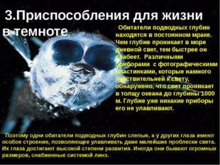 Обитатели подводных глубин находятся в постоянном мраке. Чем глубже проникает
