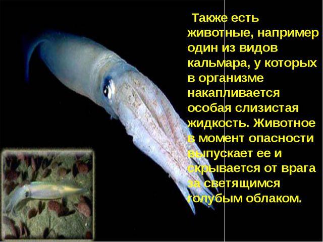 Также есть животные, например один из видов кальмара, у которых в организме н...