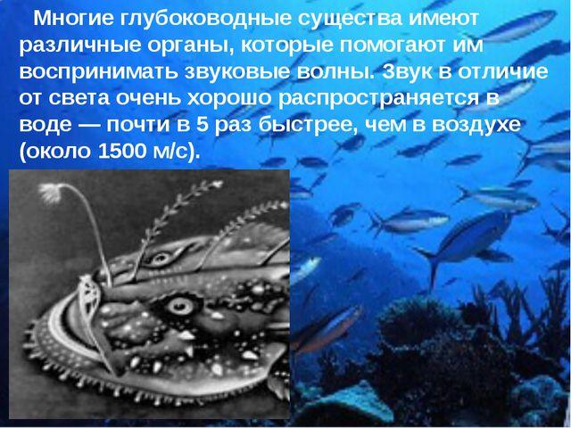 Многие глубоководные существа имеют различные органы, которые помогают им во...