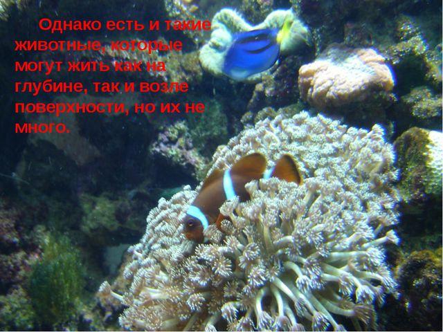 Однако есть и такие животные, которые могут жить как на глубине, так и возле...