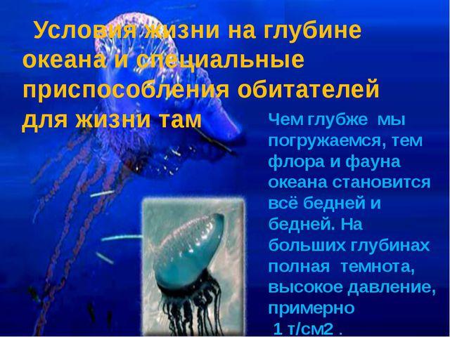 Условия жизни на глубине океана и специальные приспособления обитателей для ж...