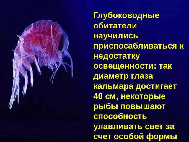 Глубоководные обитатели научились приспосабливаться к недостатку освещенности...