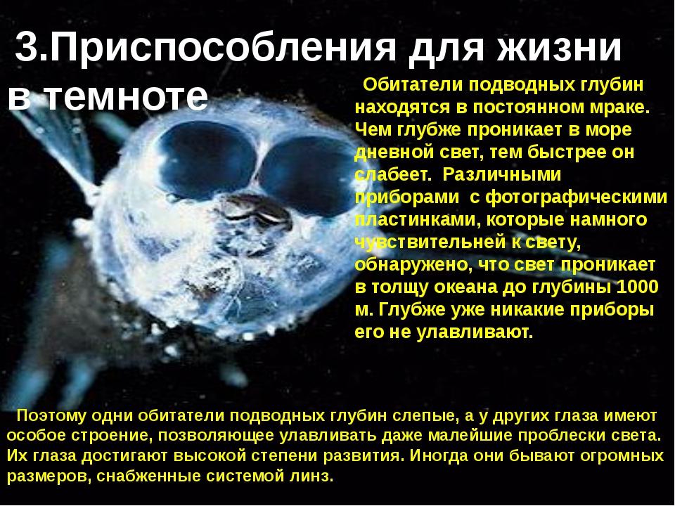 Обитатели подводных глубин находятся в постоянном мраке. Чем глубже проникает...