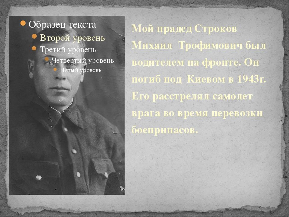Мой прадед Строков Михаил Трофимович был водителем на фронте. Он погиб под Ки...
