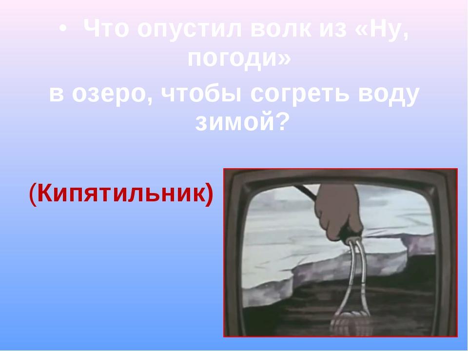 Что опустил волк из «Ну, погоди» в озеро, чтобы согреть воду зимой? (Кипятил...