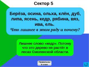16 Сектор 5 Правильный ответ Лишнее слово «кедр». Потому что это дерево не ра