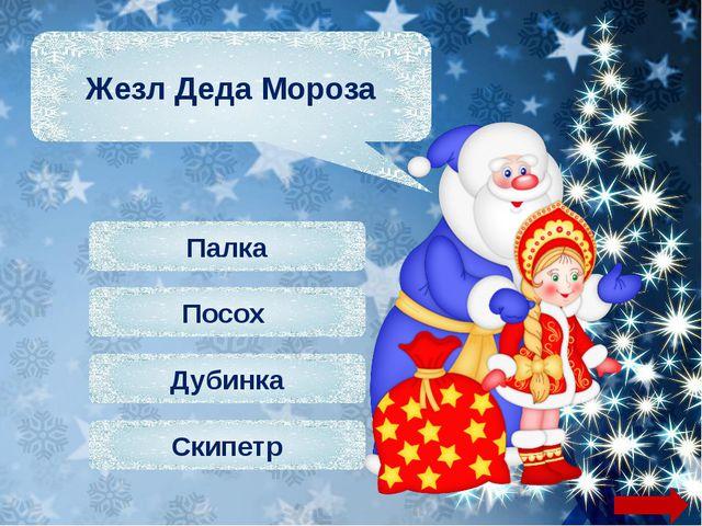 Базар Рынок Магазин Ярмарка Место предновогодней распродажи ёлок и ёлочных у...