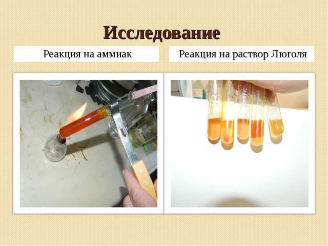 Исследование Реакция на аммиак Реакция на раствор Люголя
