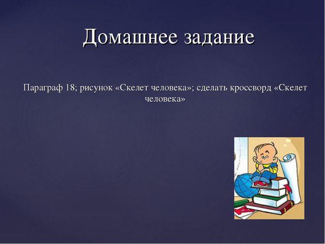 Параграф 18; рисунок «Скелет человека»; сделать кроссворд «Скелет человека» Д...