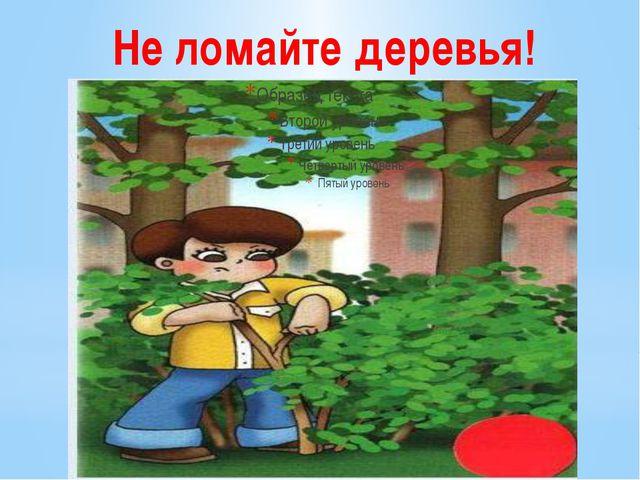 Не ломайте деревья!