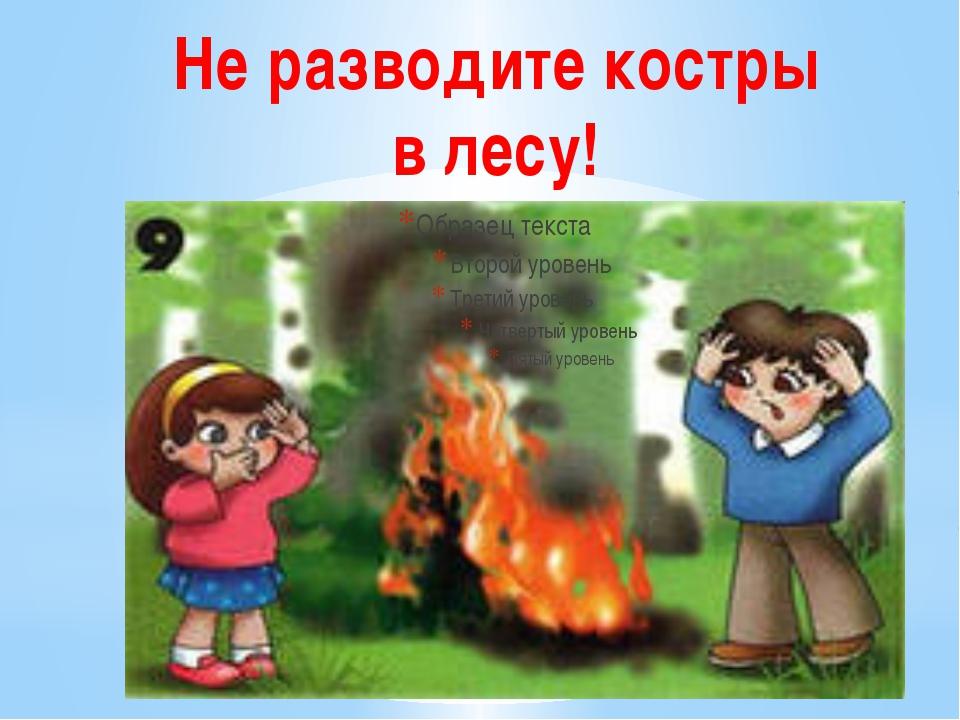 Не разводите костры в лесу!