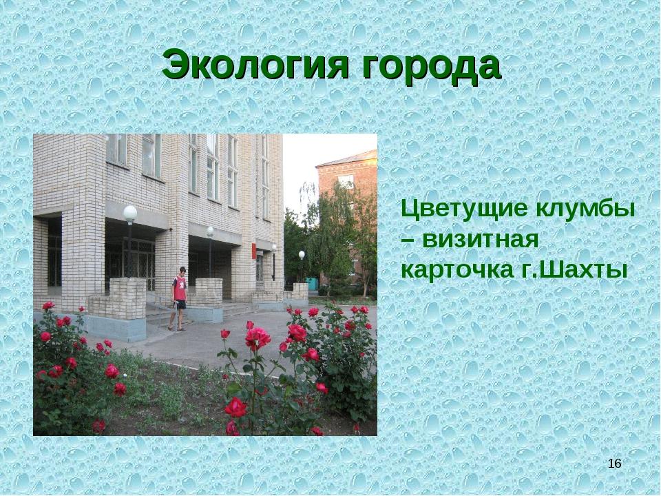 * Экология города Цветущие клумбы – визитная карточка г.Шахты