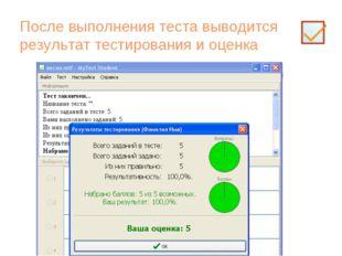 После выполнения теста выводится результат тестирования и оценка
