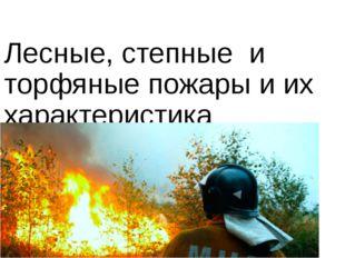 Лесные, степные и торфяные пожары и их характеристика