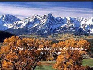 """""""Wenn die Natur stirbt,stirbt der Mensch! """" M.Prischwin"""