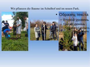 Wir pflanzen die Baume im Schulhof und im neuen Park.