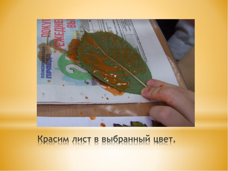Красим лист в выбранный цвет.