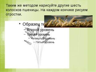 Таким же методом нарисуйте другие шесть колосков пшеницы. На каждом кончике р