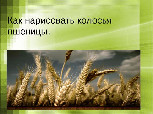 Как нарисовать колосья пшеницы.