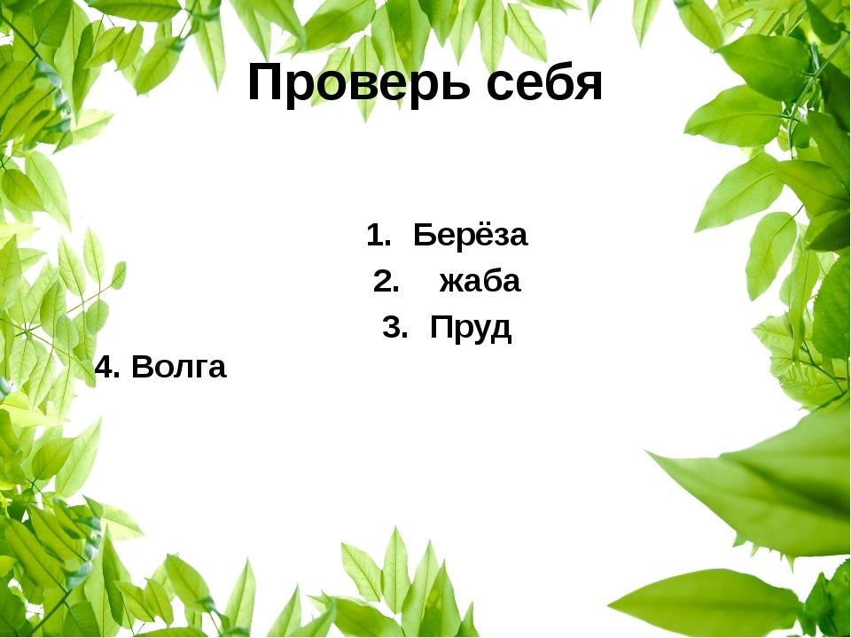 Проверь себя Берёза жаба Пруд 4. Волга