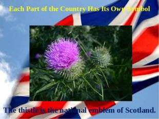 The thistle is the national emblem of Scotland. Each Part of the Country Has