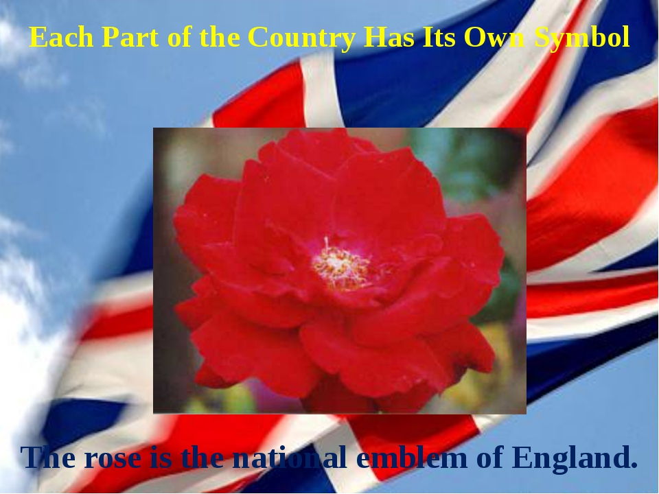 Each Part of the Country Has Its Own Symbol The rose is the national emblem o...