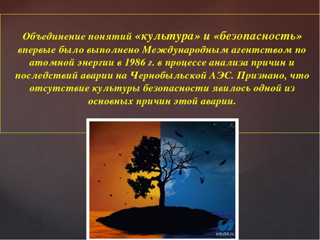 Объединение понятий «культура» и «безопасность» впервые было выполнено Междун...