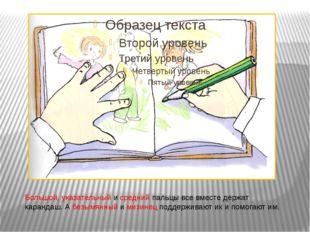 Большой, указательный и средний пальцы все вместе держат карандаш. А безымянн